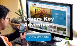 Lovers Key Adventures Website