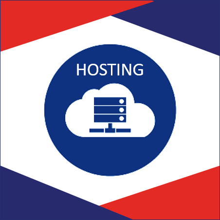 Hosting websites with dedicated servers